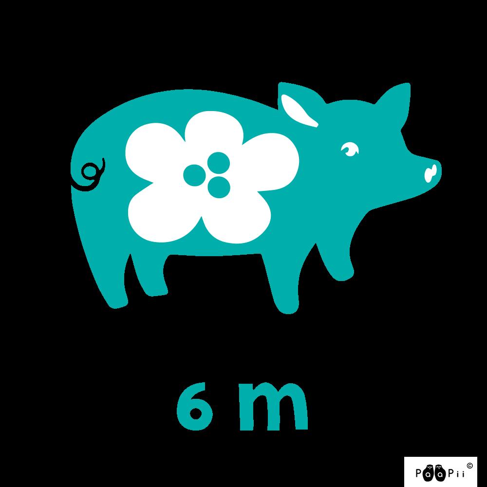 Piggy, 6m kankaita