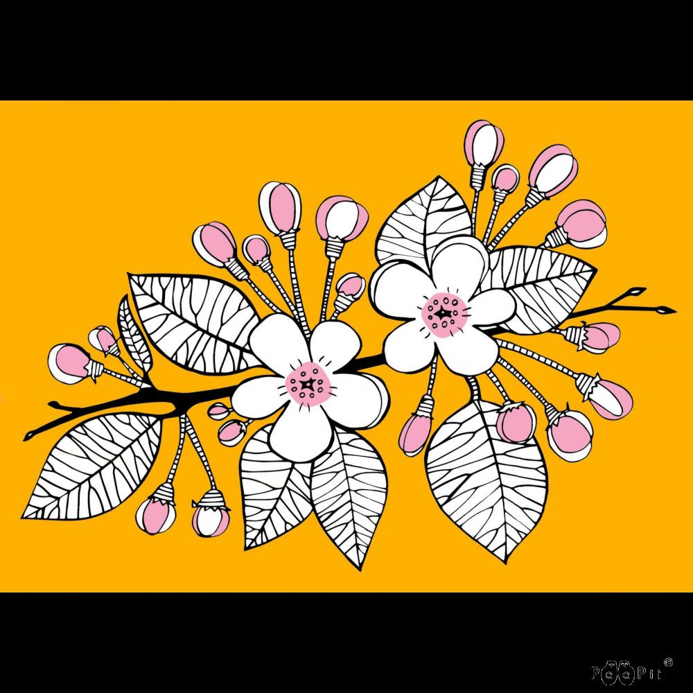 Postikortti, Omenapiha