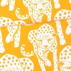 Gepardi trikoo, aurinko