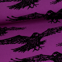 Korppi joustocollege, violetti