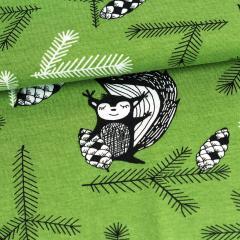 Orava trikoo, metsä
